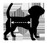 dog-sizing-model