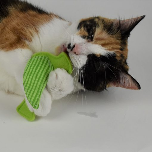 Engaging Catnip Crinkle Toy