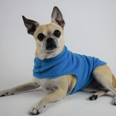 Fleece Dog Coat in Rocket Blue