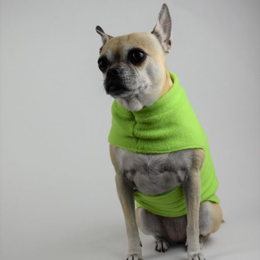 Fleece Coat in Lime Green