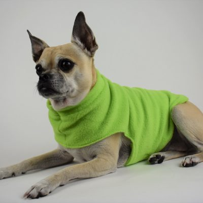 Fleece Dog Coat in Lime Green