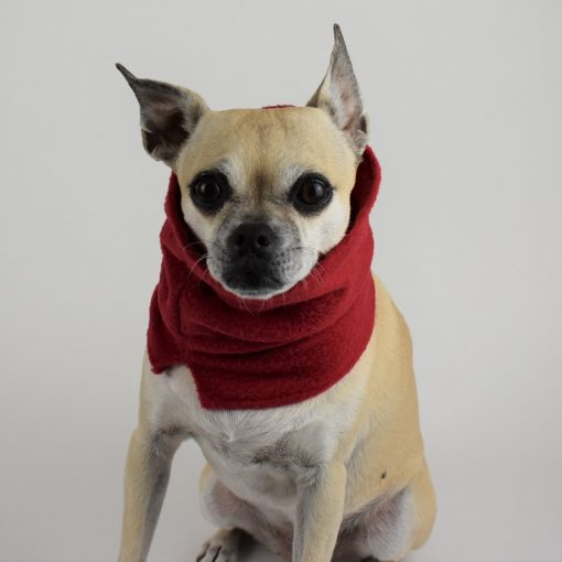 Dog Neck Warmer in Chili Red