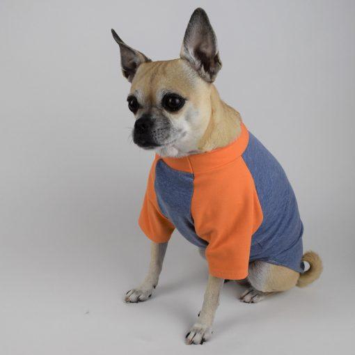 Raglan Sleeve Dog T-Shirt in Denim Blue and Clementine Orange